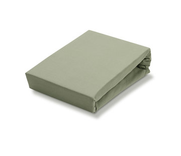 Vandyck Fitted sheet Light Olive-123 (Jersey Soft)