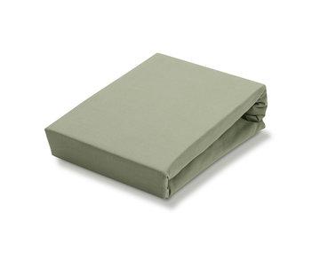 Vandyck Tilpasset ark Light Olive-123 (Jersey Soft)