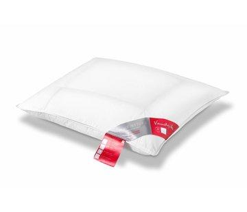 Vandyck PURE NATURE-pude (komfort / rød etiket)