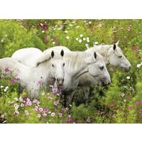 thumb-Paarden tussen de bloemen - puzzel van 300 stukjes-1