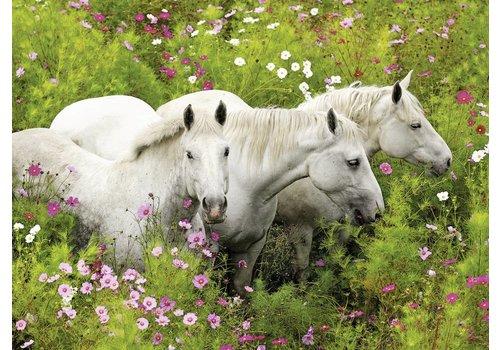 Paarden tussen de bloemen - 300 stukjes