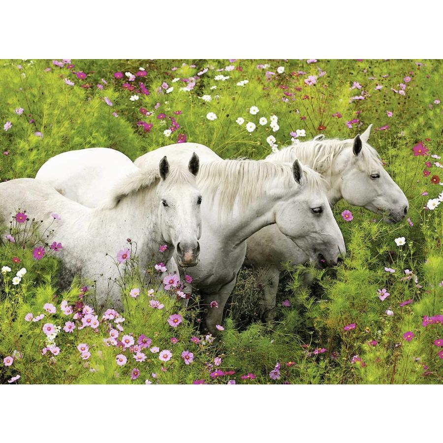 Paarden tussen de bloemen - puzzel van 300 stukjes-1
