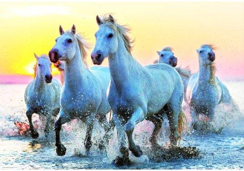 Witte paarden in de branding - 1000 stukjes