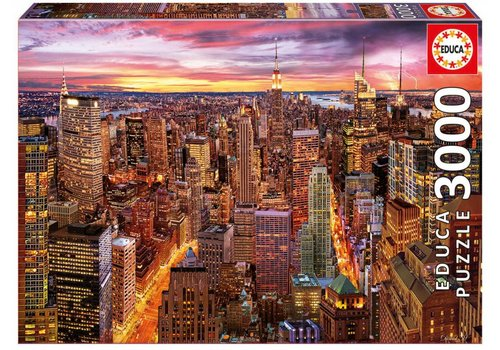 Zicht op Manhattan - 3000 stukjes