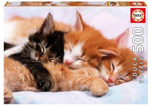 Slapende katjes - 500 stukjes