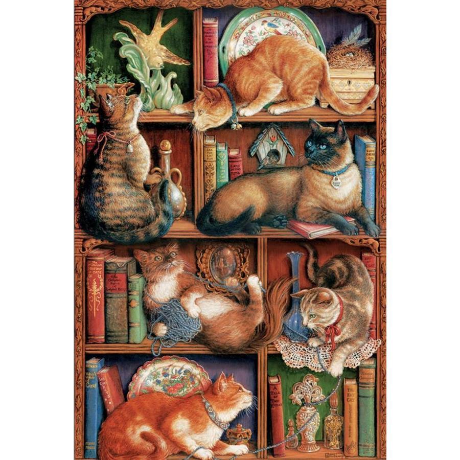 De boekenkast van Feline - puzzel van 2000 stukjes-1