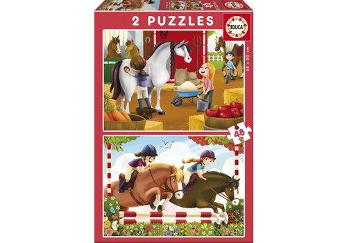 Verzot op paarden - 2 x 48 stukjes
