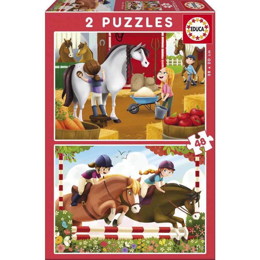 Verzot op paarden  - 2 x 48 stukjes-1