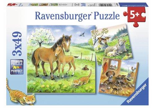 Ravensburger Temps de câlin - 3 x 49 pièces