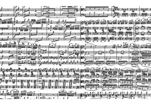 Muzieknoten  - 1000 stukjes