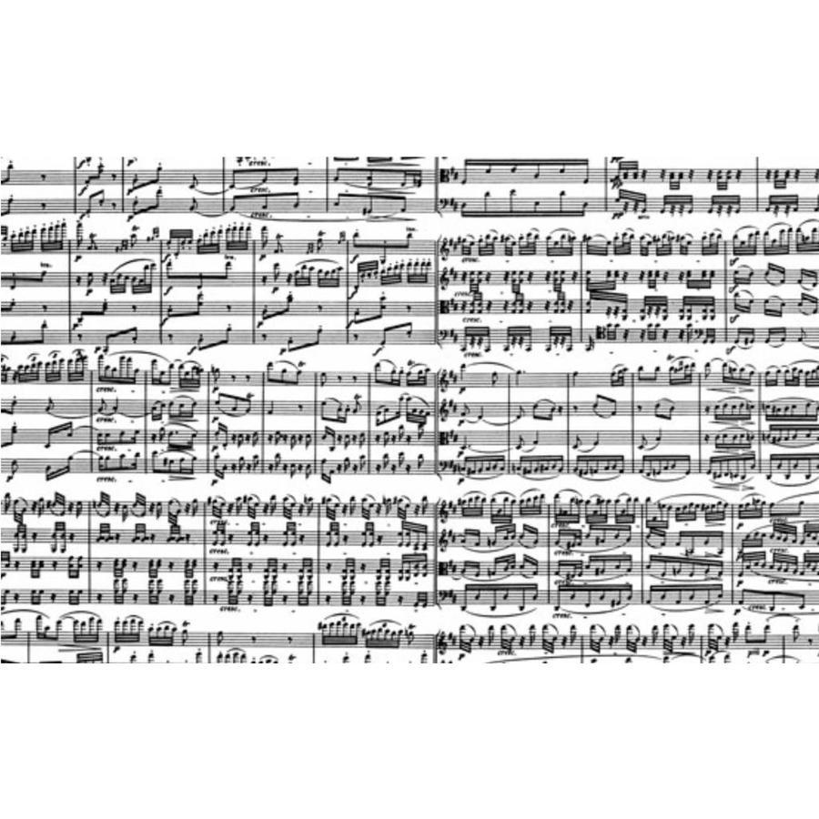 Notes musicales - puzzle de 1000 pièces-1