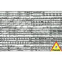 thumb-Muzieknoten - puzzel van 1000 stukjes-2