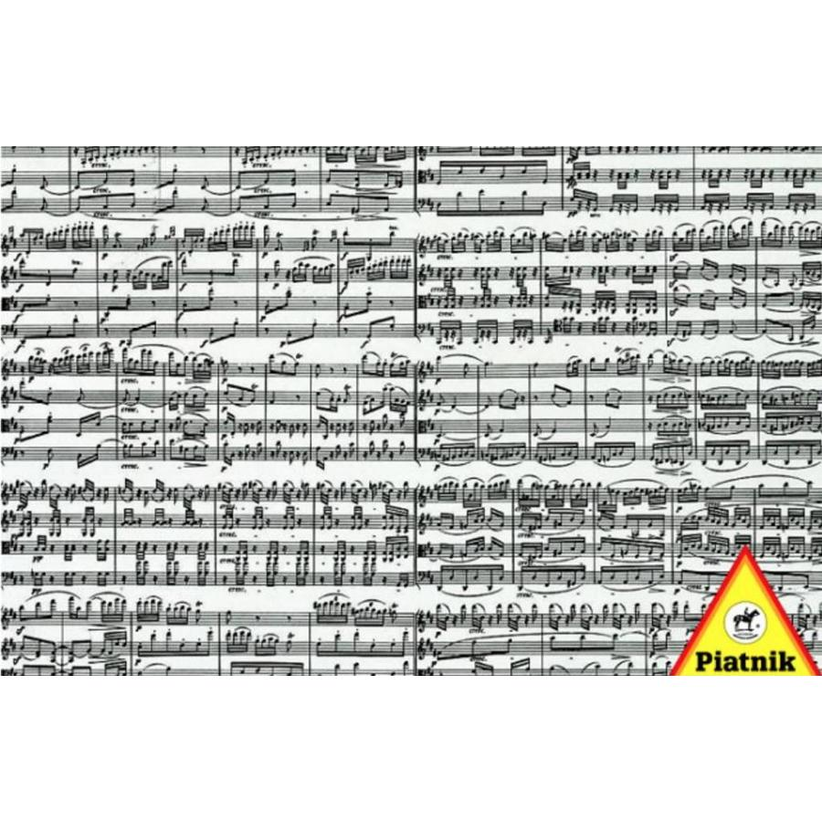 Muzieknoten - puzzel van 1000 stukjes-2