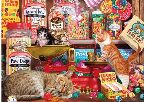 Katjes in de snoepwinkel - 500 XL stukjes