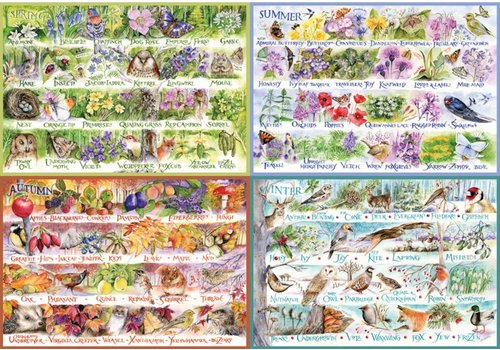 Gibsons Woodland seasons - 2000 pieces