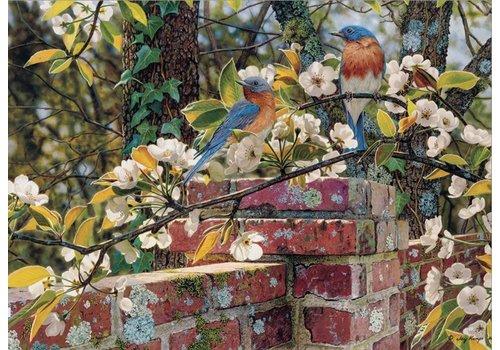 Cobble Hill Backyard Blues  - 1000 pieces