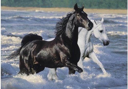 Paarden op het strand - 1500 stukjes