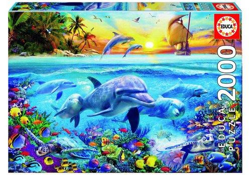 De dolfijnenfamilie - 2000 stukjes