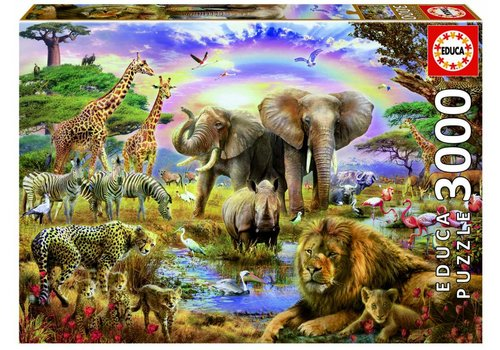 Watering hole under the rainbow - 3000 pieces