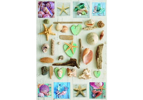 Seashells collage  - 1000 pieces