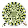 Curiosi Puzzel Double Swing - Dubbelzijdige Ronde puzzel in Hout - 88 stukjes