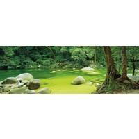 thumb-Natuur in Queensland, Australië - 1000 stukjes-1