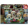 Educa Puppies in the luggage -  jigsaw puzzle of 500 pieces