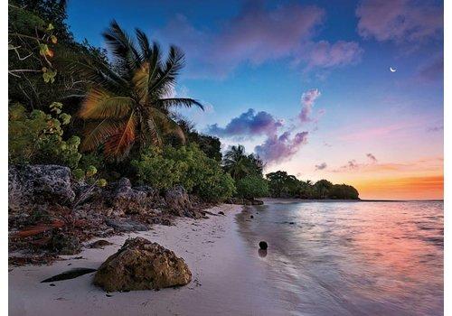 Tropisch Eiland  - 1000 stukjes