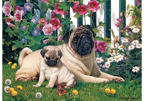 Pug Family - 1000 pieces