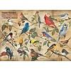 Cobble Hill Vogels in de achtertuin - puzzel van 1000 stukjes