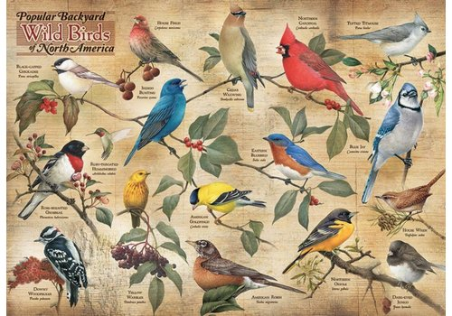 Vogels in de achtertuin - 1000 stukjes