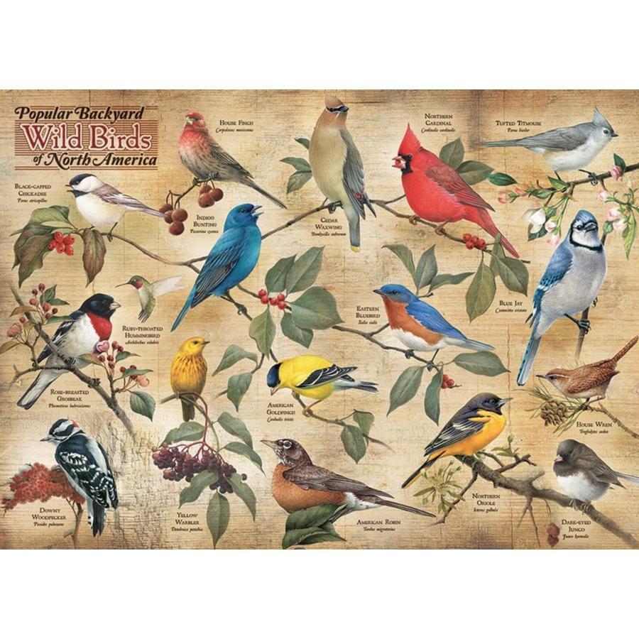 Vogels in de achtertuin - puzzel van 1000 stukjes-1