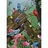 Cobble Hill Vogels uit het bos - puzzel van 1000 stukjes