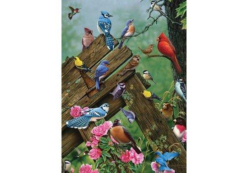 Vogels uit het bos - 1000 stukjes