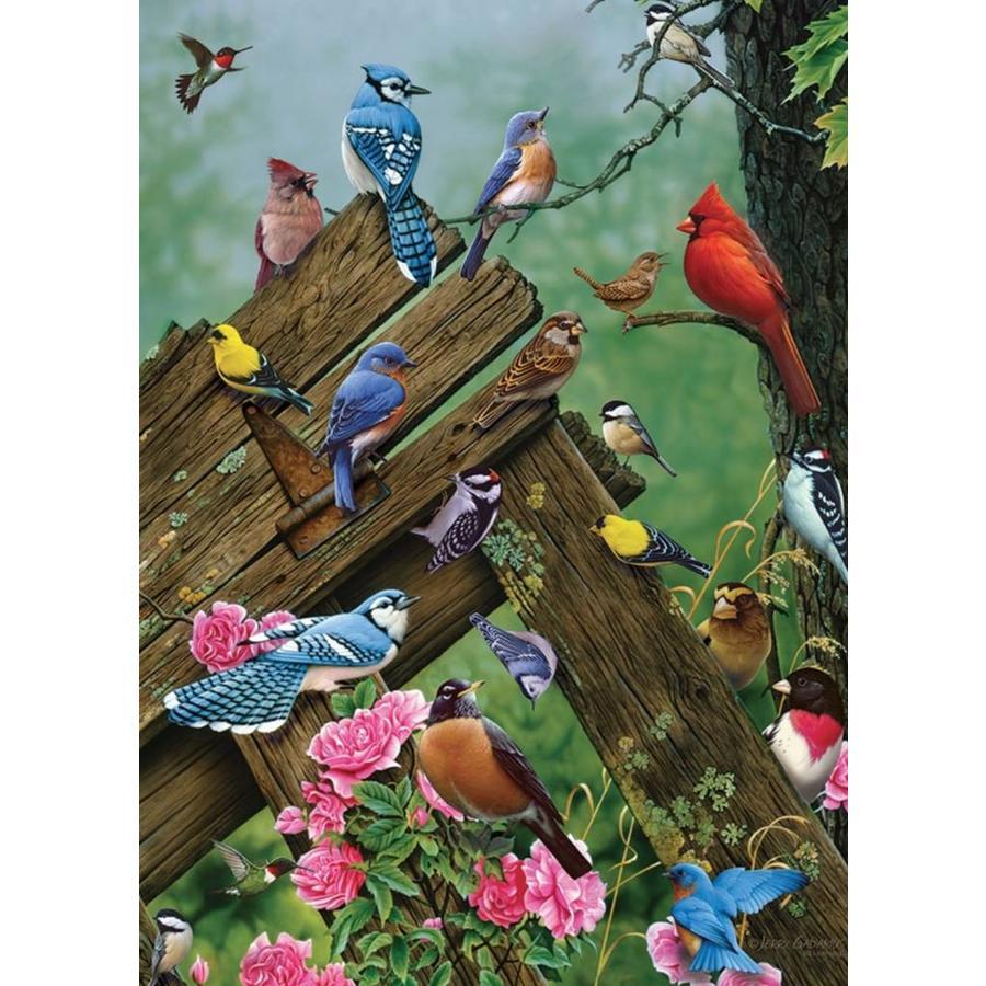 Vogels uit het bos - puzzel van 1000 stukjes-1