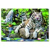 Educa Witte Bengaalse tijgers - 1000 stukjes