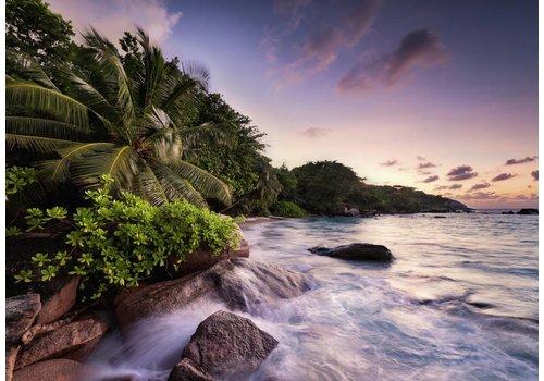 Eiland Praslin van de Seychellen - 1000 stukjes