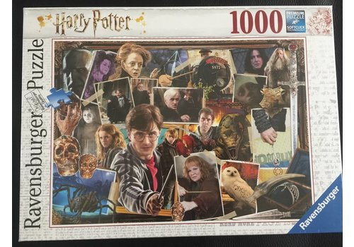 Harry Potter vs Voldemort - 1000 pieces