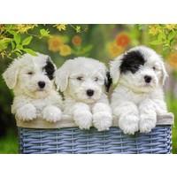 thumb-Schattige puppies - 200 stukjes-1