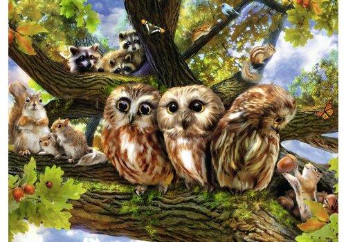 Cute owls - 200 pieces