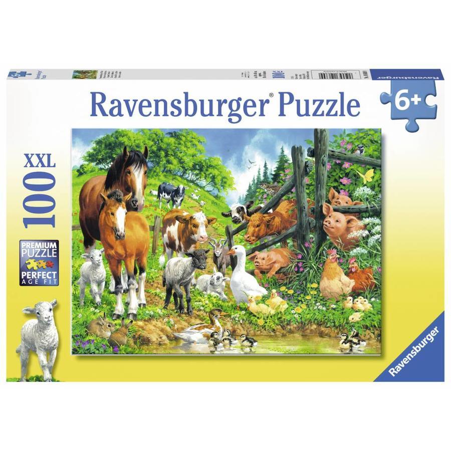 Dierenbijeenkomst - puzzel van 100 stukjes-2