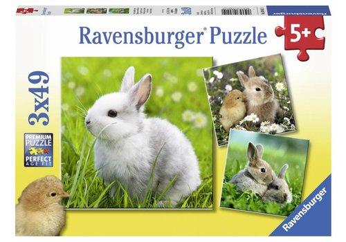 Schattige konijntjes - 3 x 49 stukjes