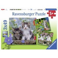 thumb-Tijger katjes - 3 puzzels van 49 stukjes-1