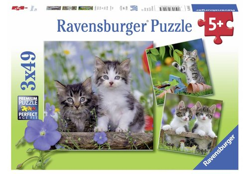 Ravensburger Tiger kittens - 3 x 49 pieces