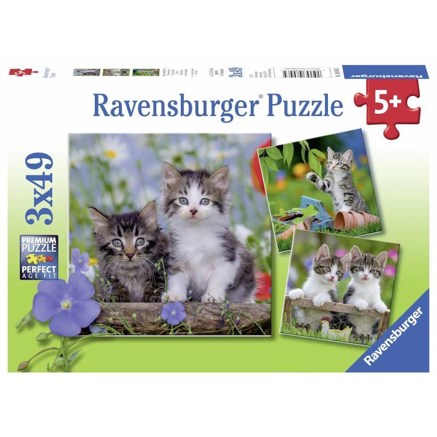 Tijger katjes - 3 puzzels van 49 stukjes-1