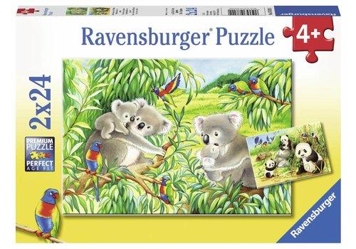 Koala en Panda - 2 x 24 stukjes