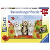 Ravensburger Kittens on a voyage of discovery - 2 puzzles of 12 pieces