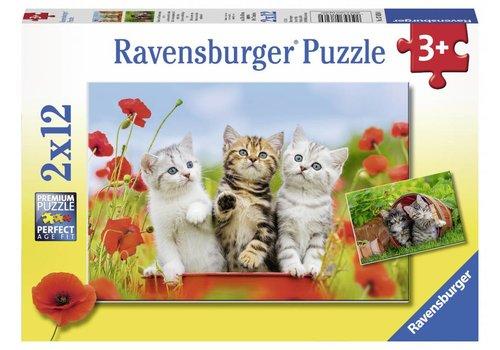 Ravensburger Les chatons en voyage de découverte - 2 x 12 pièces
