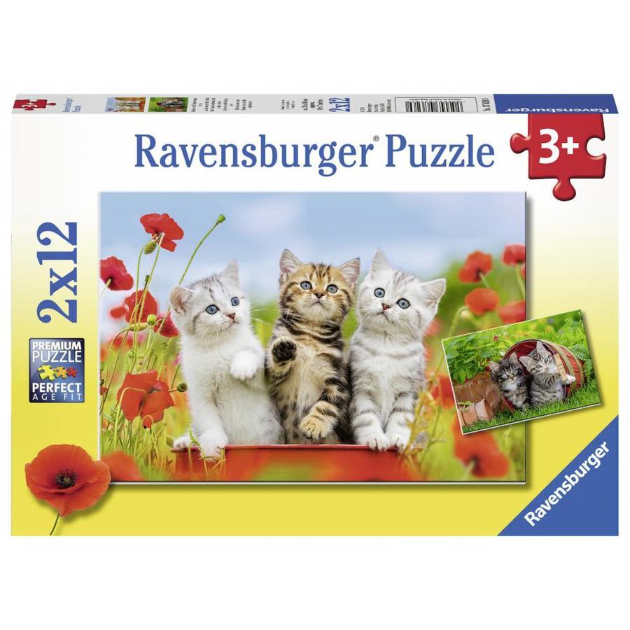 Katjes op ontdekkingsreis - 2 puzzels van 12 stukjes-1