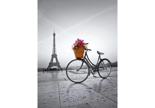Fiets in Parijs - 500 stukjes